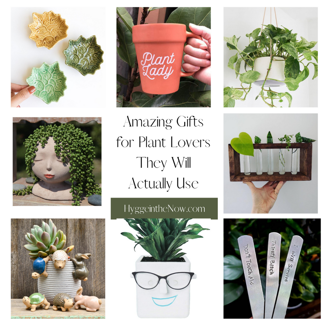 Amazing gifts for plant lovers