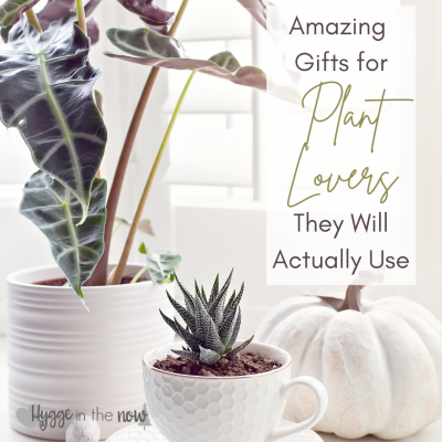 Amazing Gifts For Plant Lovers They Will Actually Use